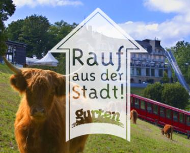 Kommunikation Gurten – Park im Grünen
